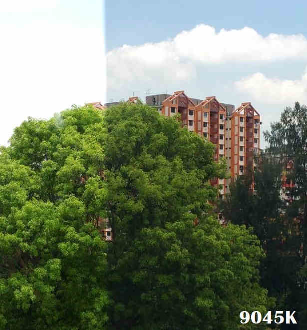 solar film 9045