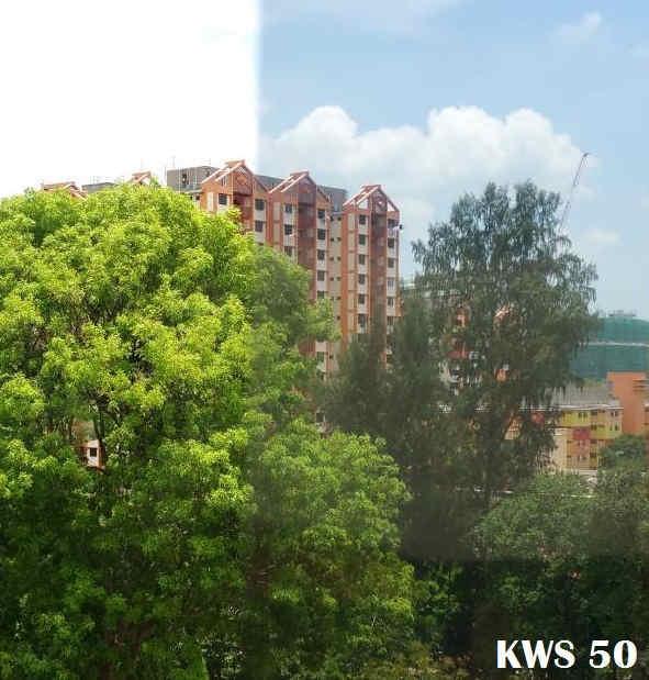 solar film KWS
