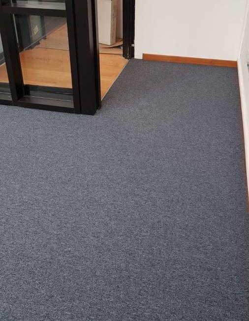 plain carpet NM