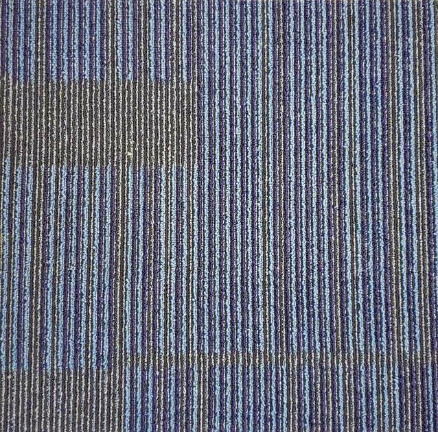 WA olain carpet